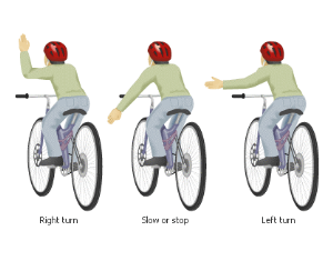 Bicycle turning hand signals